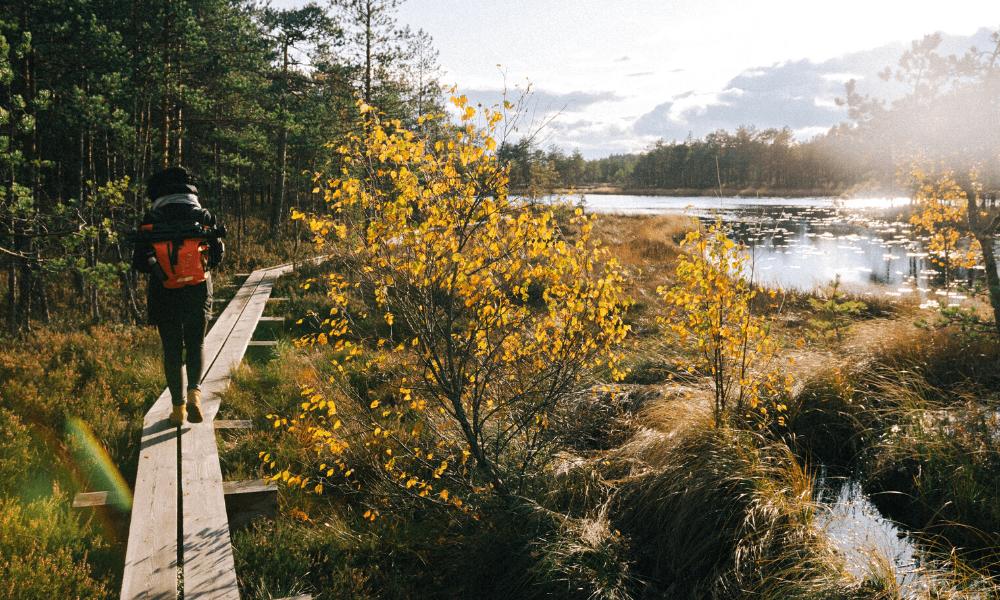 Kuva: Siim Lukka/ Unsplash