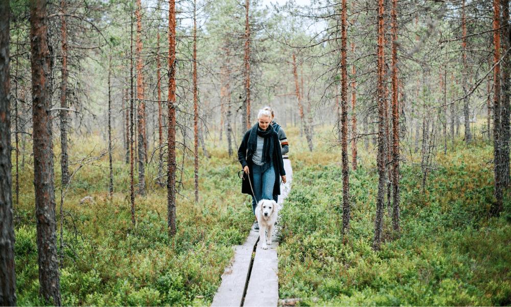 Kuva: Julia Kivelä/ Facebook – Visit Jyväskylä